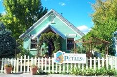 Petals_house